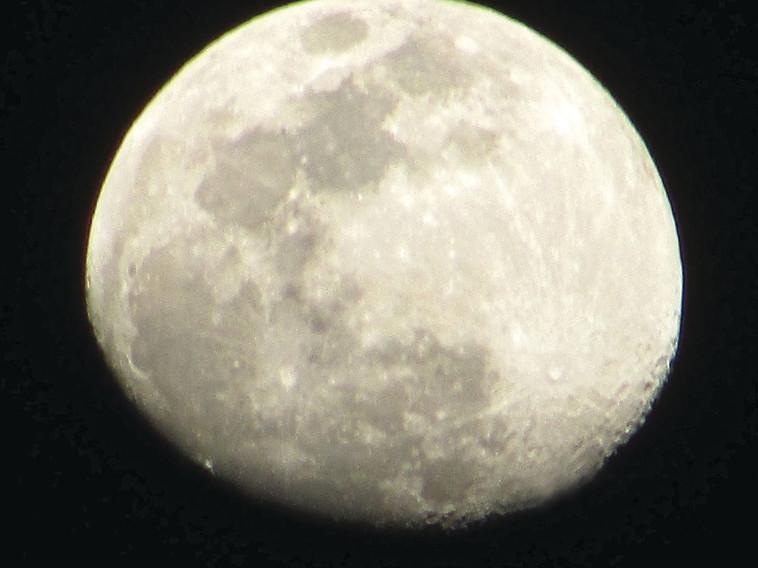 ירח בנחל חווארים (צילום: יובל גיא)
