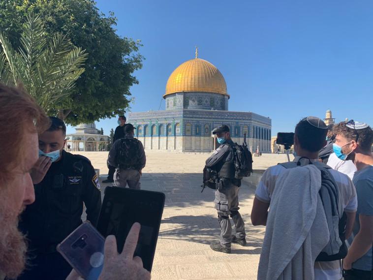 חודשה עלייה להר הבית (צילום: קרן שלום ירושלים)