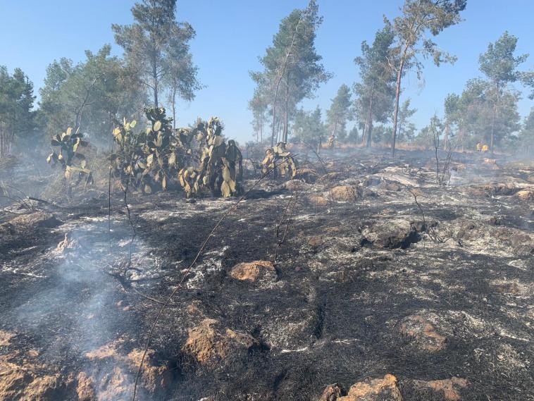 השריפה באזור ירושלים  (צילום: דוברות כבאות והצלה)