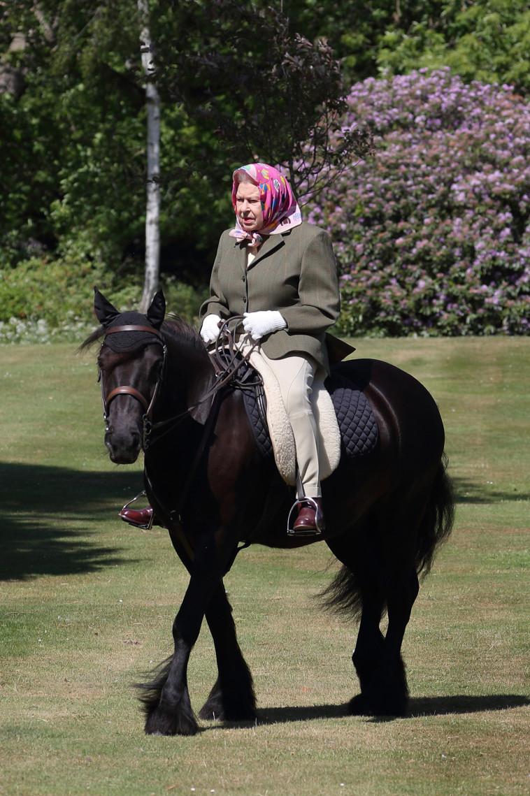 המלכה ברכיבה בארמון ווינזדור  (צילום: Steve Parsons - WPA Pool/Getty Images)