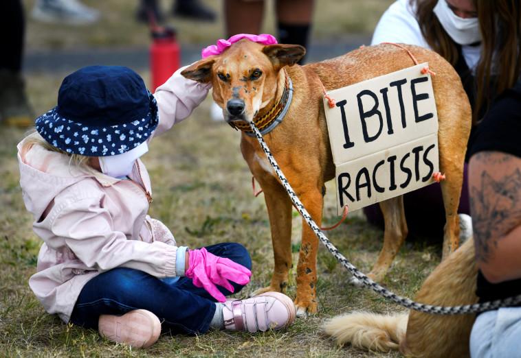 ההפגנות בעקבות מותו של ג'ורג פלויד  (צילום: REUTERS/Piroschka van de Wouw)