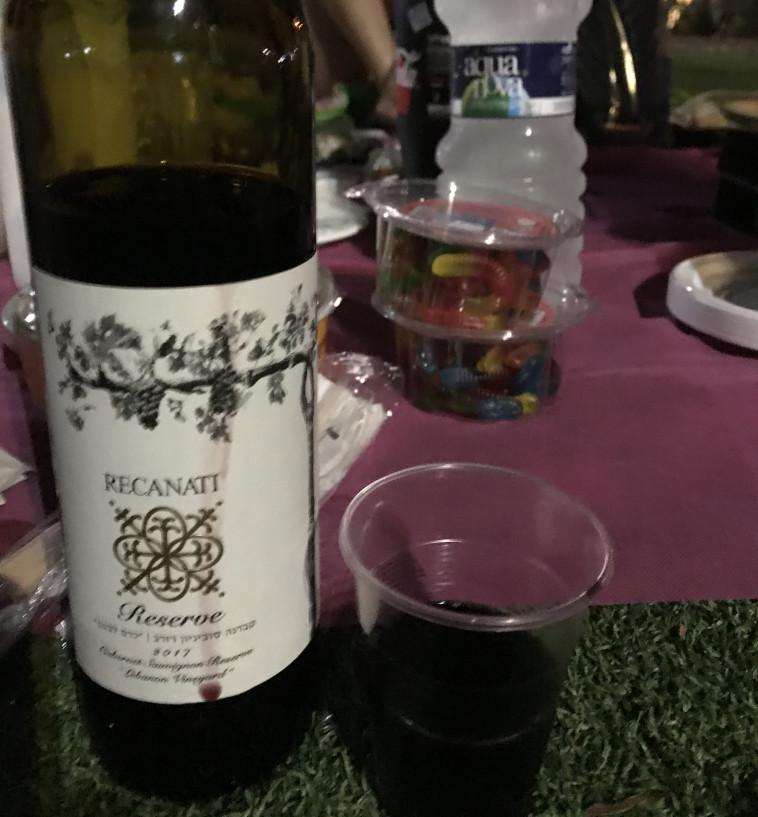 יין בשדרה. רקנאטי כרם לבנון  (צילום: טליה לוין)