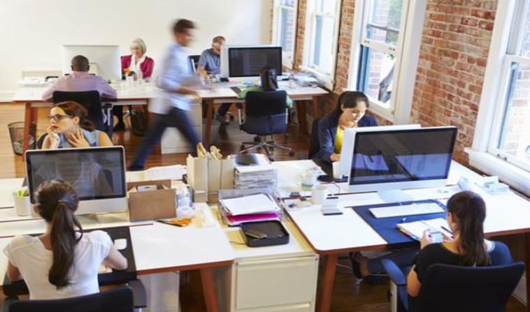 עובדים במשרד(צילום: שאטרסטוק)