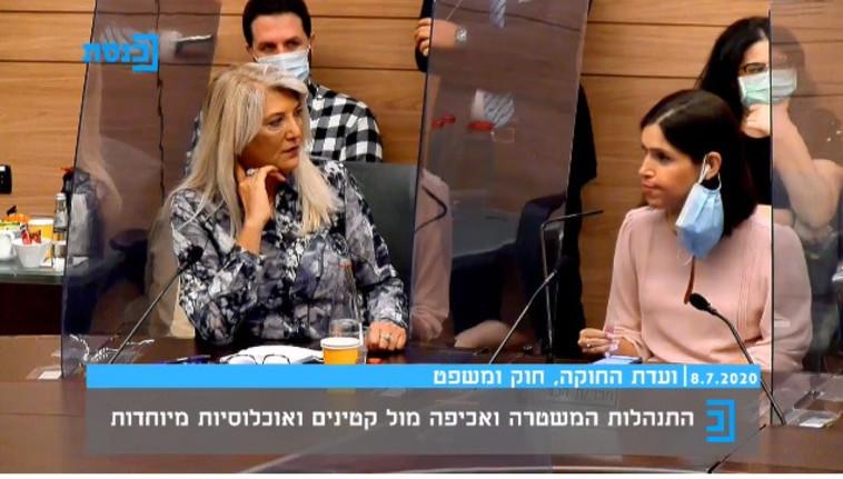 קארין אלהרר, אסנת מארק בוועדת החוקה (צילום: צילום מסך מערוץ הכנסת)