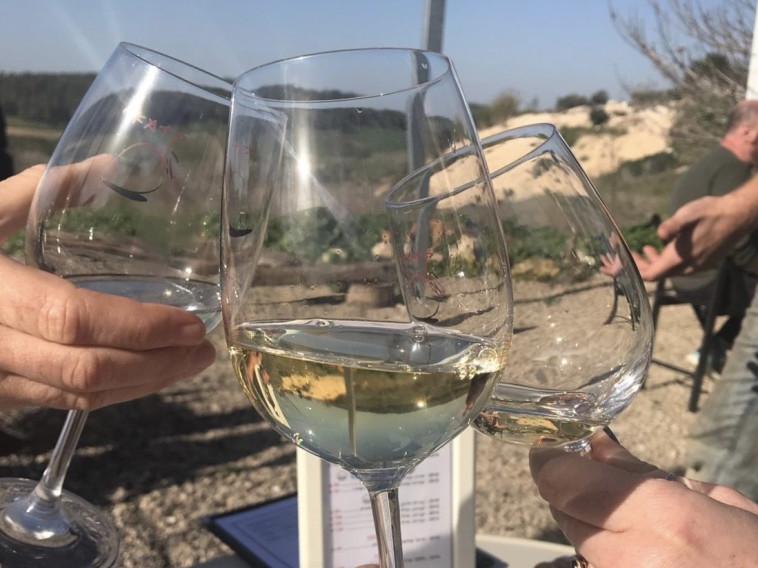 יין לבן בשמש (צילום: טליה לוין)