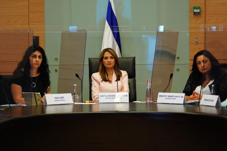הדיון בוועדת הקורונה (צילום: עדינה וולמן, דוברות הכנסת)