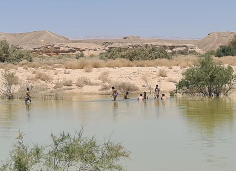 מטיילים בערבה  (צילום: תיירות הערבה התיכונה)