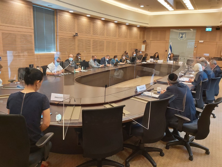 הדיון בוועדת הקורונה (צילום: דוברות הכנסת)