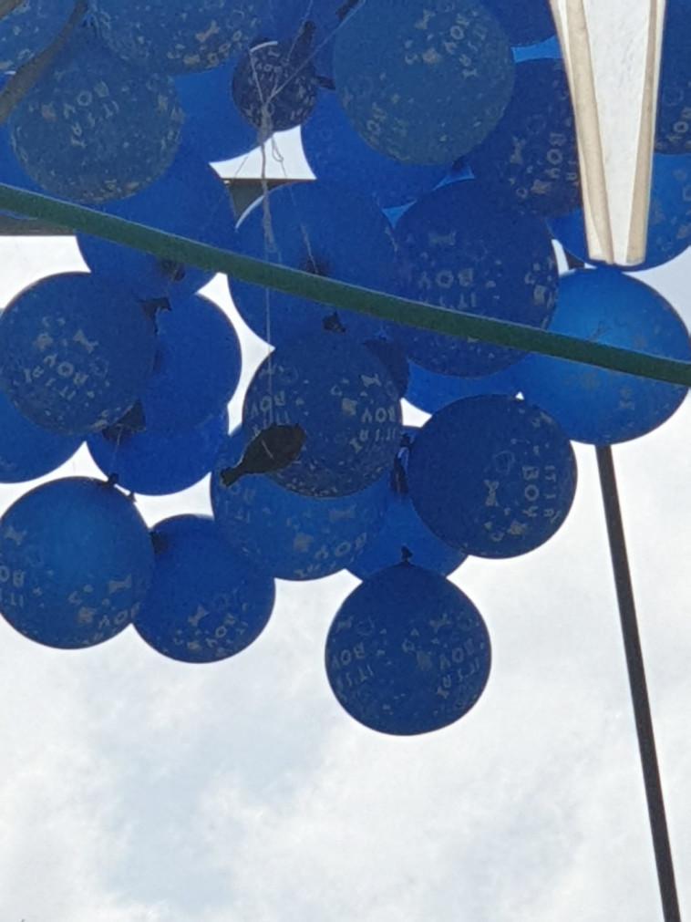 בלוני נפץ בעוטף עזה (צילום: דוברות המשטרה)