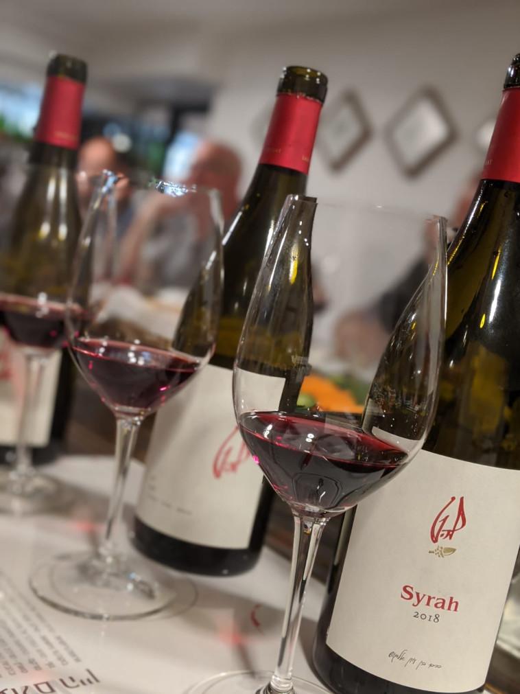 טעימת יינות להט - מרכז איש הענבים  (צילום: אסנת גואטה)