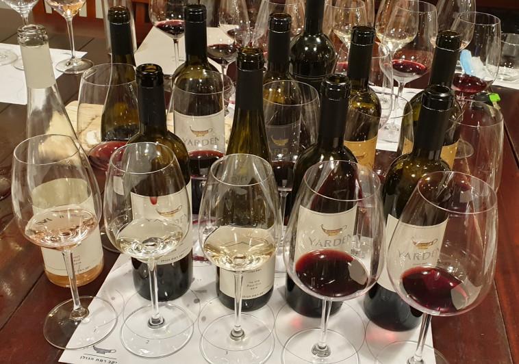 טעימת יין - יקב רמת הגולן  (צילום: ניר קיפניס)