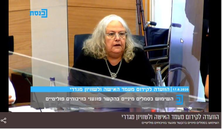 אריאנה מלמד בדיון בוועדה למעמד האישה (צילום: צילום מסך)