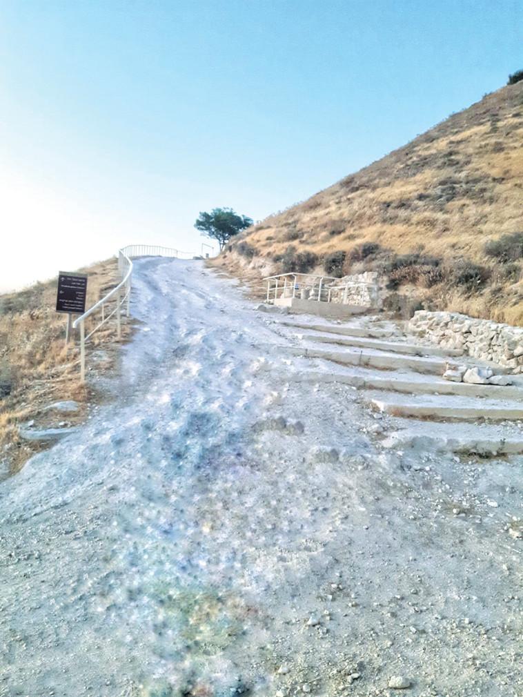 המדרגות בהרודיון  (צילום: ערן קרוזל רשות הטבע והגנים)