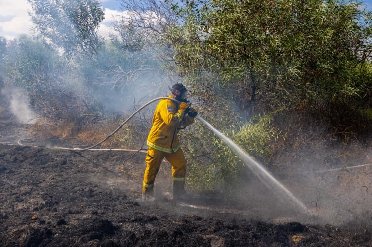שריפות בעוטף עזה כתוצאה מהפרחת בלוני תבערה (צילום: ניר צפריר)