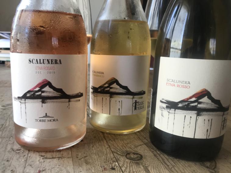 יינות טורה מורה. אתנה, סיציליה  (צילום: סנהדרינק)