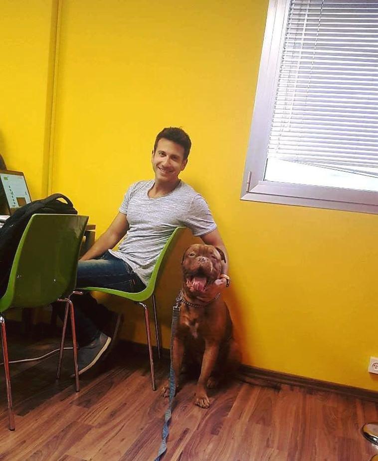 הכלב סימבה (צילום: יח''צ)