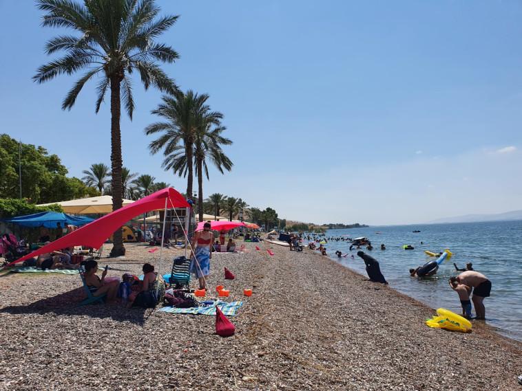 חוף כורסי בכנרת, היום (צילום: איגוד ערים כנרת)