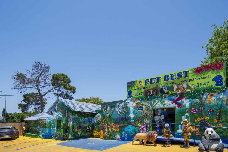 PETBEST סופרמרקט למזון חיות מחמד (צילום: טל בדרק)