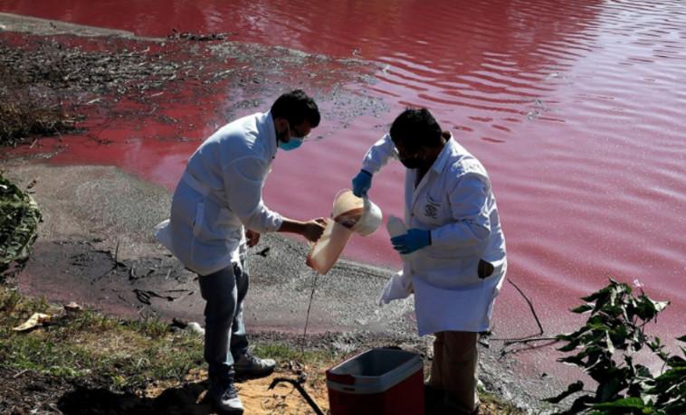 המדענים בפעולה (צילום: צילום מסך יוטיוב)