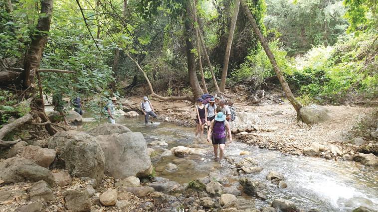 נחל כזיב - צילמה  (צילום: איריס ארבל, החברה להגנת הטבע)