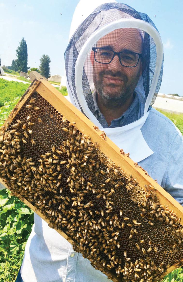 פסטיבל מועדים לסביבה - ישי שטקלר ירצה על דבורים (צילום: יח''צ)