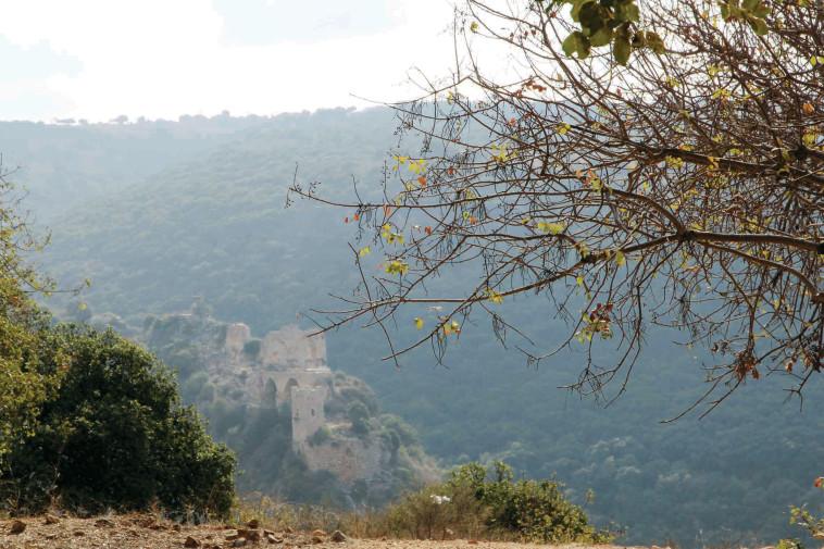 פארק גורן (צילום: יעקב שקולניק, קק''ל)