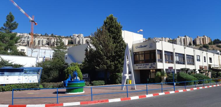 מפעל ורד הגליל (צילום: יריב בן ארוש)