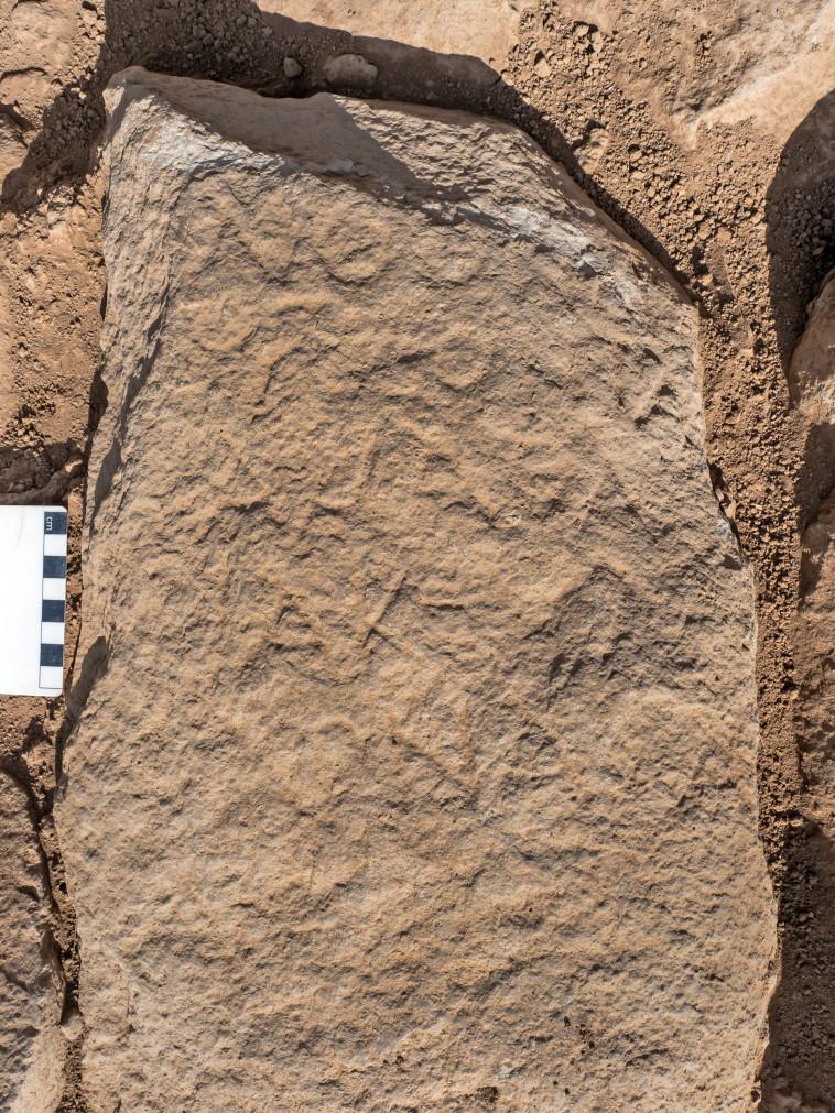 אבן הגבול שהתגלתה (צילום: אסף פרץ, באדיבות רשות העתיקות)