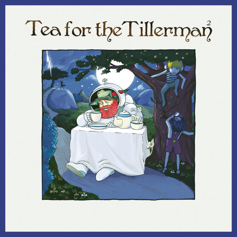 עטיפת האלבום המחודש Tea fot the Tillerman (צילום: עטיפת אלבום)