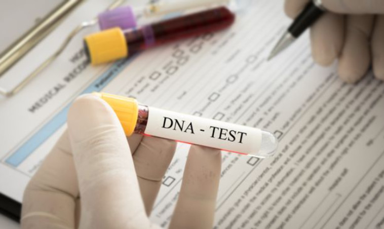 בדיקת DNA, אילוסטרציה (צילום: gettyimages)