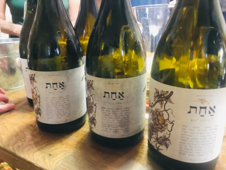 יינות יקב אחת  (צילום: טליה לוין)