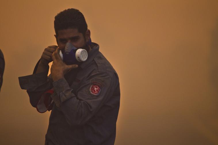 השריפה בכרמל (צילום: רוני סופר)