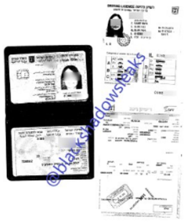 צילום תעודת זהות של מבוטחת ב''שירביט'' שהודלף לרשת (צילום: צילום מסך טלגרם)