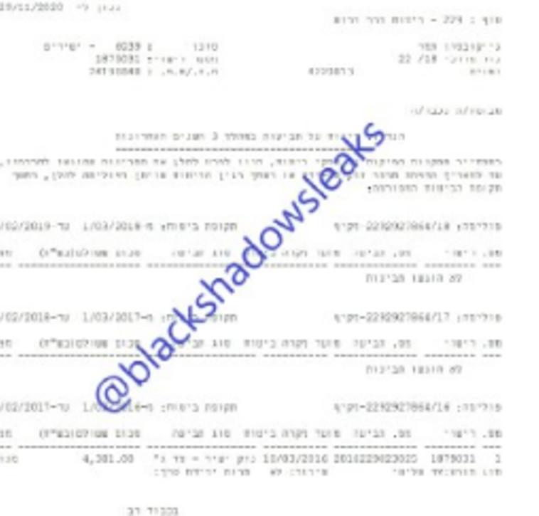 צילום מסמך של מבוטח ''שירביט'' שהודלף לרשת על ידי ההאקרים (צילום: צילום מסך טלגרם)