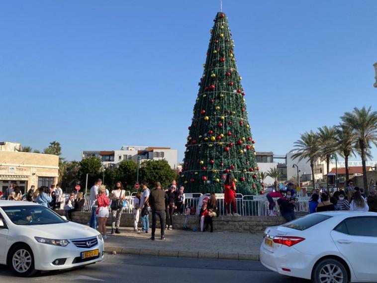 עץ חג המולד ביפו (צילום: אבשלום ששוני)