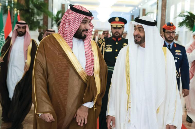 נסיכי הכתר של אבו דאבי וסעודיה (צילום: רויטרס)