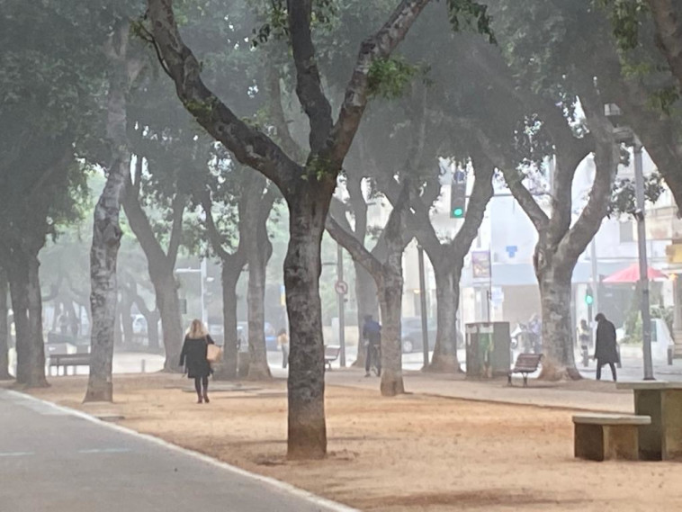 ערפל בתל אביב (צילום: אבשלום ששוני)