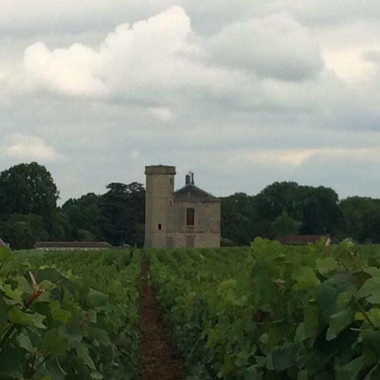 שאטו דה קלו ווזו'. צרפת  (צילום: סנהדרינק)