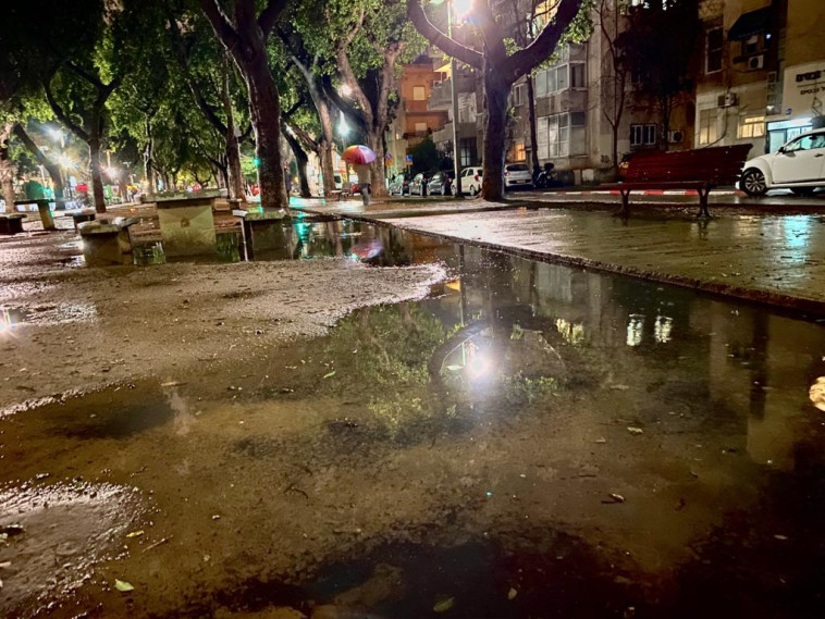תל אביב בימי הגשם (צילום: אבשלום ששוני)
