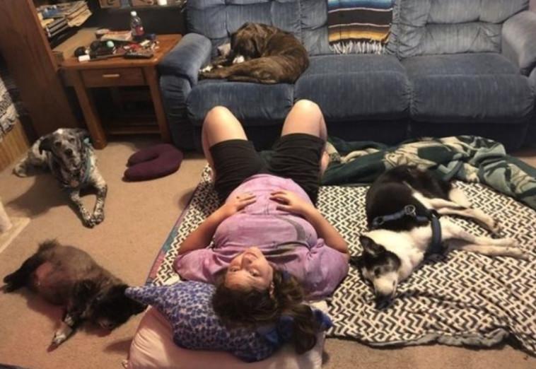 מליסה עמוס וארבעת כלביה (צילום: רשתות חברתיות)