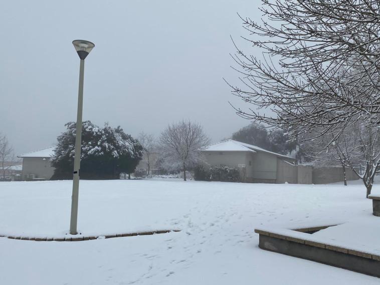 שלג בעין זיוון (צילום: עירית גולדנברג, כפר הנופש עין זיוון)