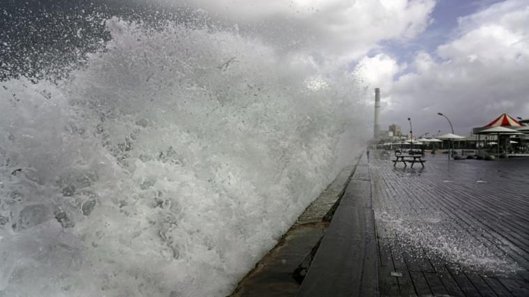 נמל ת''א הבוקר (צילום: דימה מושקו)