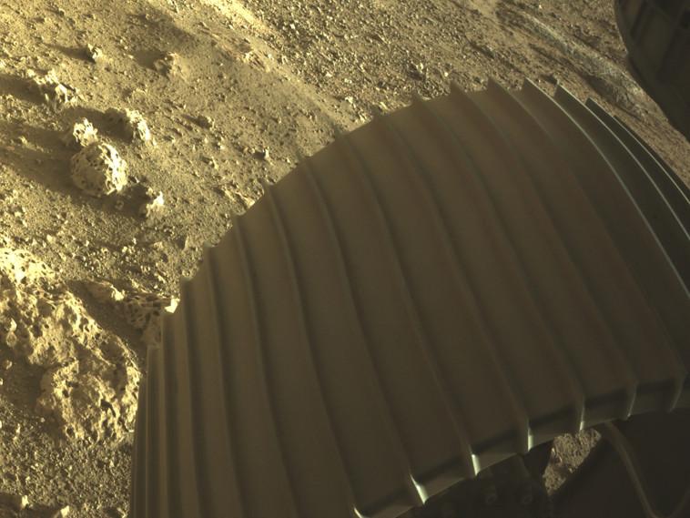 מאדים ממצלמת הגשושית פרסוורנס (צילום: NASA/JPL-Caltech/Handout via REUTERS)