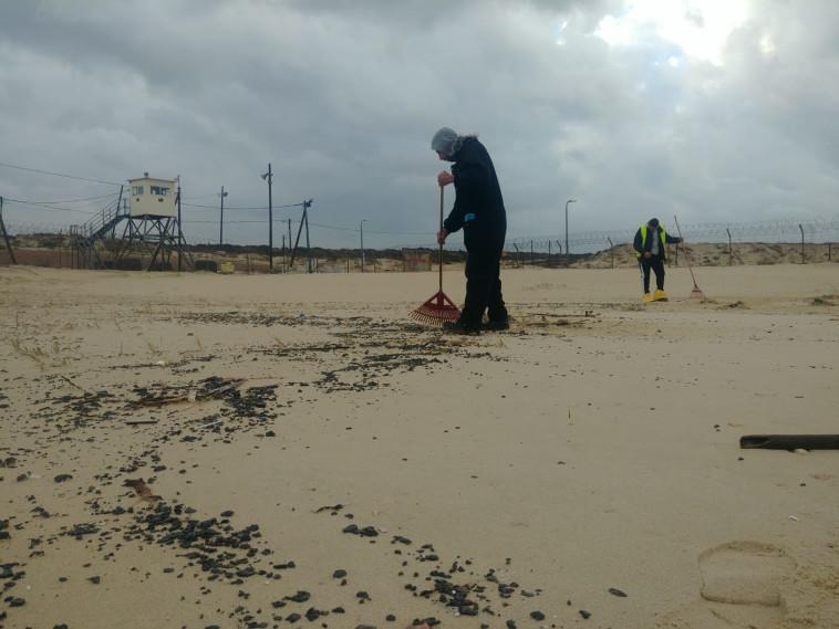 ניקוי בחוף ראשון לציון (צילום: דרור אריאלי, המשרד להגנת הסביבה)