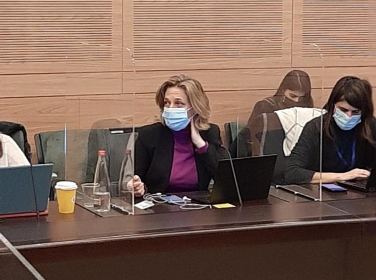 ד''ר שרון אלרעי-פרייס בוועדת החוקה (צילום: דוברות הכנסת)