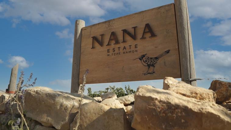 יקב ננה. כרמים במדבר  (צילום: אסף ספקטור)