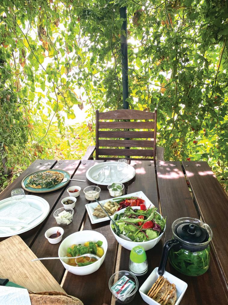 ארוחת בוקר, גן ירק (צילום: מיטל שרעבי)