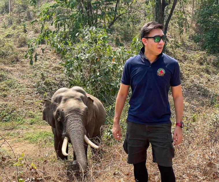 הווטרינר והפיל ת'אנג התאחדו (צילום: רשתות חברתיות)
