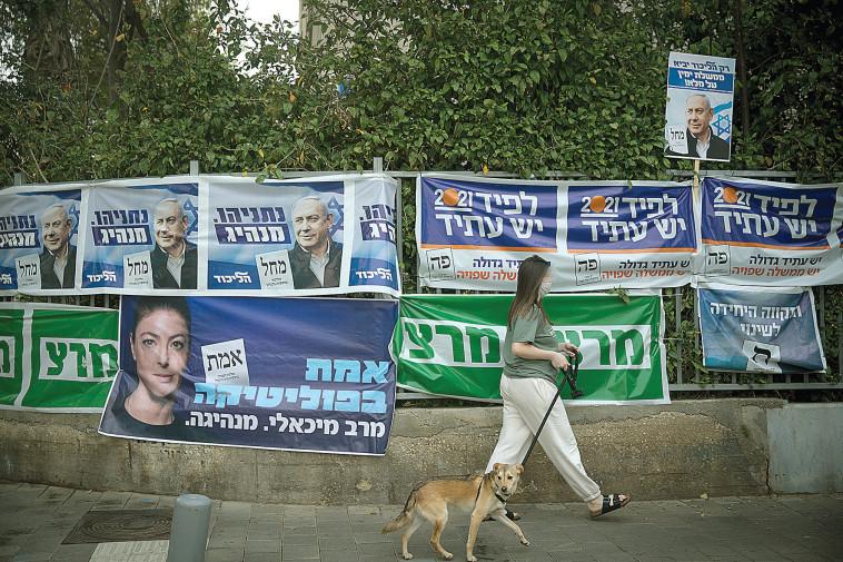 שלטי בחירות (צילום: מרים אלסטר, פלאש 90)