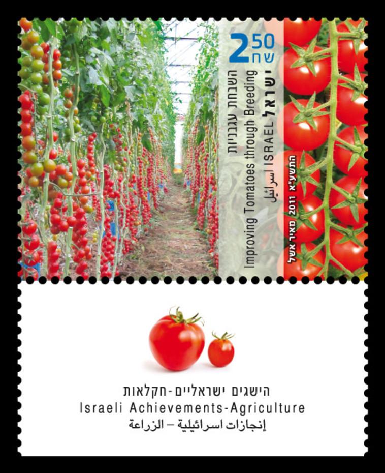 בול הישגים ישראלים בחקלאות - עגבניות שרי, שנת הנפקה 2011 (צילום: באדיבות השירות הבולאי בדואר ישראל)